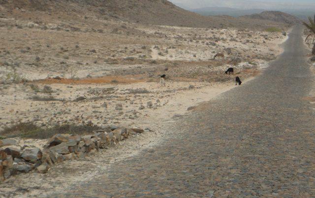 La strada che porta a Bofareira